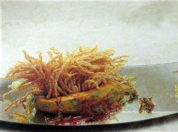 龙眼珊瑚鹿肉