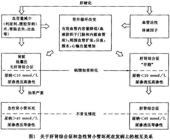 ml一bdc107电路原理图
