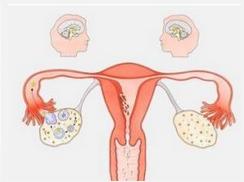 排卵期出血