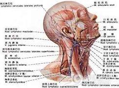 颈部淋巴结结核