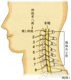 颈椎管狭窄症