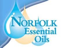 诺福克 Norfolk