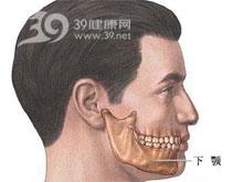 下颚骨雕塑