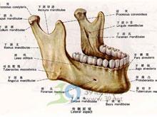 下颌骨不对称矫正