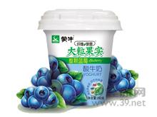 蒙牛 蒙牛纤维新意大粒蓝莓果实酸牛奶