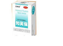 克林霉素磷酸酯1溶液剂