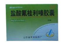 鲁平(盐酸氟桂利嗪胶囊)