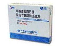 单唾液酸四己糖神经节苷脂钠注射液