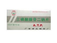 三磷酸腺苷二钠片(浦北)