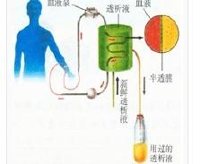 电解质紊乱