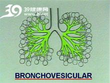 支气管肺泡音