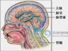 颅内占位性病变