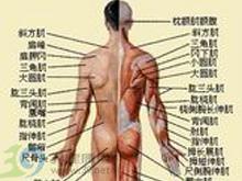 腰背的持续隐痛