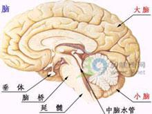 脑桥小脑角综合征