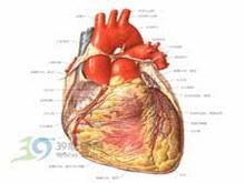 心排血量增多