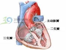 心肌营养障碍