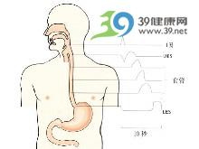食管蠕动功能减弱