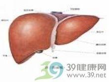 大块肝细胞坏死