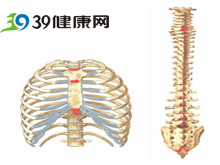 胸骨下端压痛