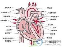 妊娠期胸痛