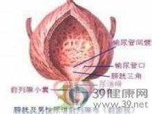 急性溶血性尿毒综合征