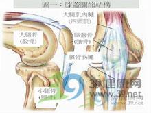 骨代谢减低