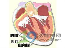 指或趾甲下裂片状出血