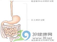 癌症晚期胃肠道症状