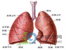 腹式反常呼吸