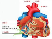 动脉血氧饱和度降低