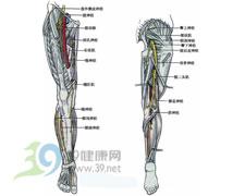 根性坐骨神经痛