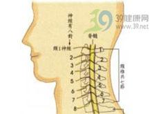 颈背部肌肉痉挛