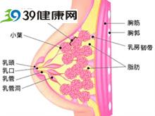 乳腺随月经出现胀痛