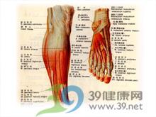 小腿腓部肌肉疼痛和压痛