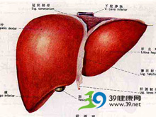 肝被膜血肿破裂