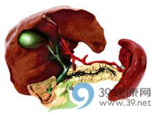 肝区血管杂音