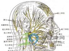 癫痫性头痛