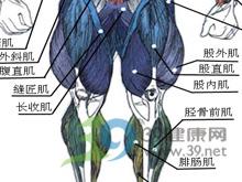 大腿肌肉萎缩