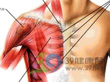 胸锁乳突肌附着处压痛