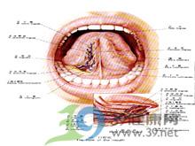 口腔粘膜有形似奶块的斑膜